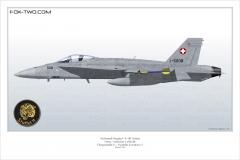 Profil d'un F/A-18C Hornet du Fliegerstaffel 11.