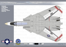 065-F-14A-VF-124-03-dessus-1600