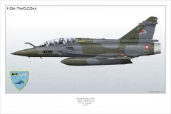 183-Mirage-2000D-EC-1-3-Navarre