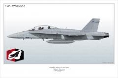 259-F-A-18D-31st-FS