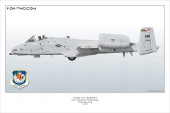 265-A-10C-175th-FW