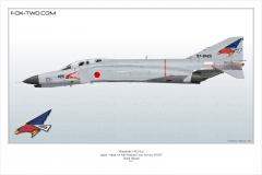 180-F-4EJ-Kai-302nd-Hikotai