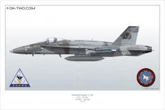 195-F-A-18C-NSAWC-163503