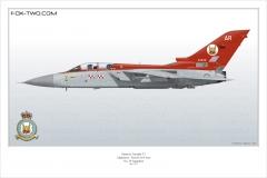 289-Tornado-F3-ZE-839