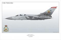 290-Tornado-F3-ZE-888