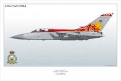 305-Tornado-F3-ZE-735