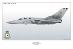 291-Tornado-F3-ZE-810