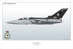 306-Tornado-F3-ZE-887