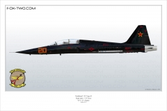 169-F-5F-VFC-13-Saint-761580