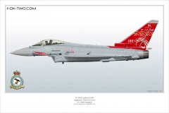 371-Typhoon-N-29Sqn-ZK353-special