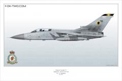 351-Tornado-F3-No-11-Sqn-ZE-295