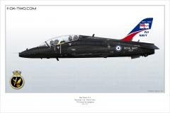 391-Hawk-Angleterre-XX337-special