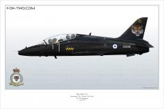 392-Hawk-Angleterre-XX226-special