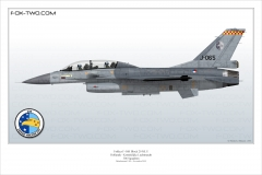 390-F-16B-MLU-Hollande-306-Sqn-J-065