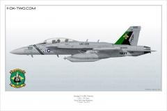 414-EA-18G-VAQ-209-166895-CAG