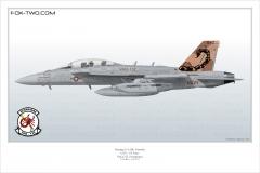 416-EA-18G-VAQ-132-166894-CAG