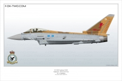 454-Typhoon-FGR4-UK-6-Sqn-ZK342-Special
