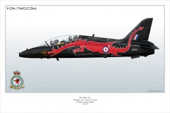 223-Hawk-T1A-4-FTS
