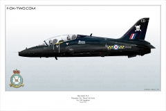 224-Hawk-T1A-No-100-Sqn