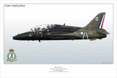 338-Hawk-T1A-208-Sqn-XX-350