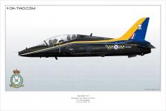 346-Hawk-Angleterre-XX285-special