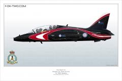 394-Hawk-Angleterre-XX307-special