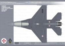 085-F-16B-03-dessus