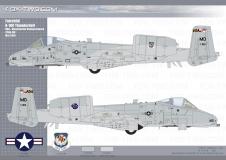 117-A-10-175th-FW-02