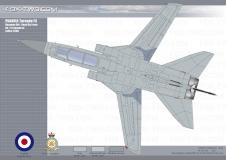 131-Tornado-F3-ZE-288-03-dessus
